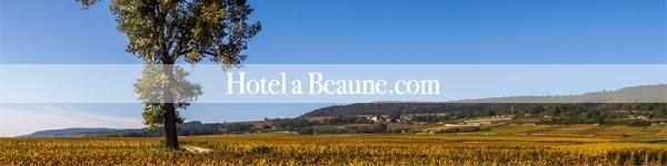 logo hotelabeaune.com l'escarboucle maison d'hotes à bligny sur ouche cote d'or bourgogne à proximité de Beaune